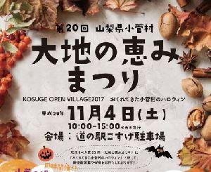 11/4(土)開催 「第20回大地の恵みまつり〜KOSUGE OPEN VILLAGE 2017〜」に協力