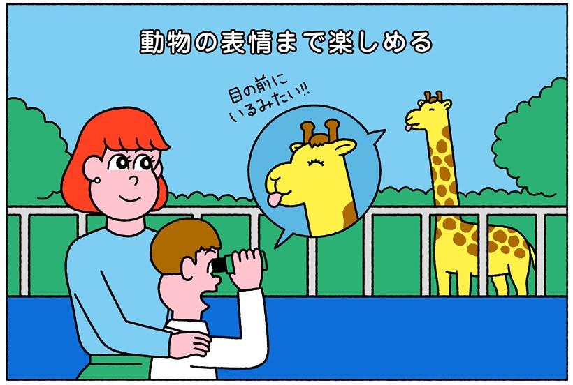 動物を見ているイラスト